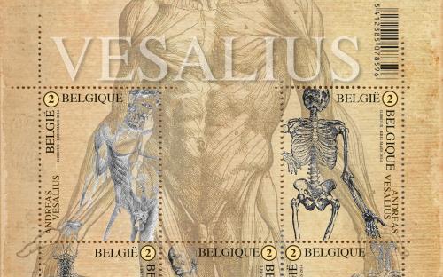 22 april: Andreas Vesalius - Het volledige vel