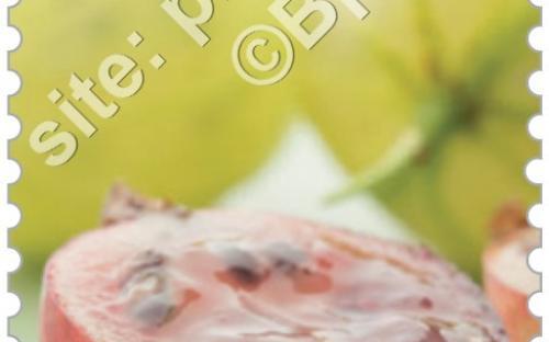 29 juni: Vergeten fruit (Stekelbes)