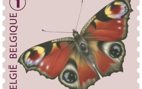 6 oktober: Vlinders van M.Meersman, Dagpauwoog (Rolzegel)