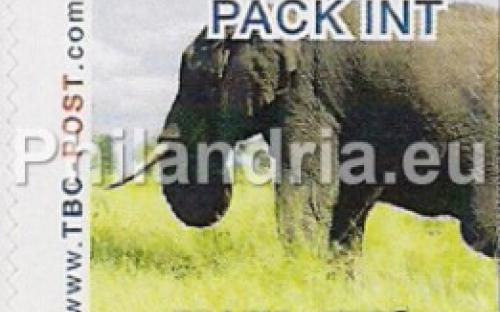 6 november: PACK-INT: Olifant 5