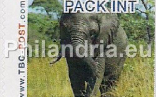 6 november: PACK-INT: Olifant 7