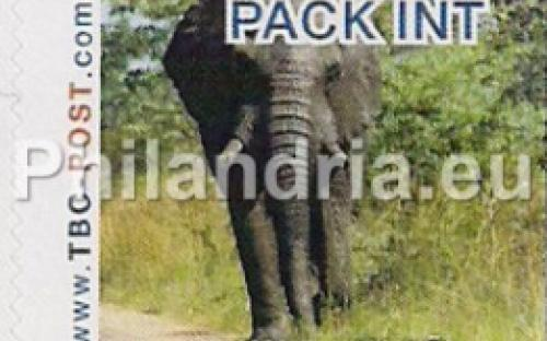 6 november: PACK-INT: Olifant 8