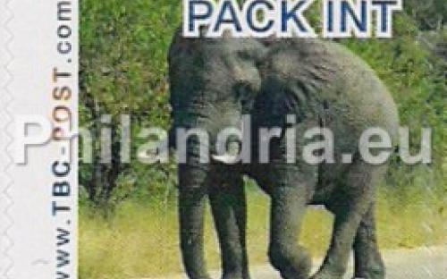 6 november: PACK-INT: Olifant 9