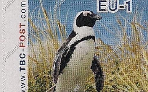 7 augustus: EU-1: Zwartvoetpinguïn (in het gras)