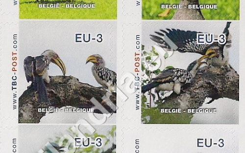 20 november: EU-3: Zuid-Afrikaanse (compleet vel)