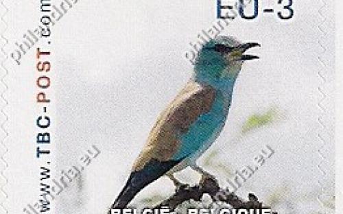 20 november: EU-3: Scharrelaar (witte achtergrond)