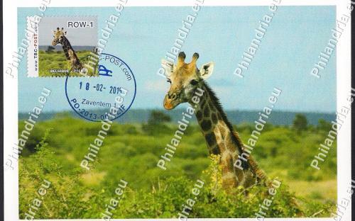 18 februari: ROW-1: Giraf (FDCa)