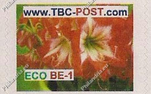 ECO BE-1 (€0.63) - Keukenhof, Amarilis Peacock