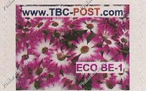 ECO BE-1 (€0.63) - Keukenhof, Osteospermum