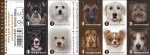 postzegelboekje Hondenrassen naderbij