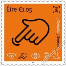Ierland - De 5 zintuigen
