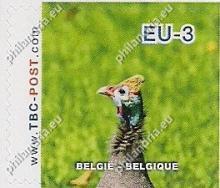 België - TBC-Post, Zuid-Afrikaanse vogels
