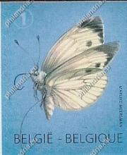 België - Herdruk Koolwitje