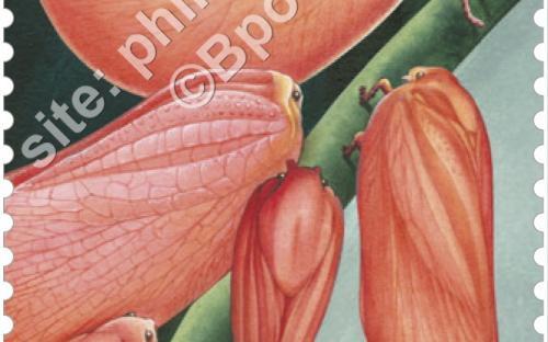 11 mei: Plant of Dier? - (...)