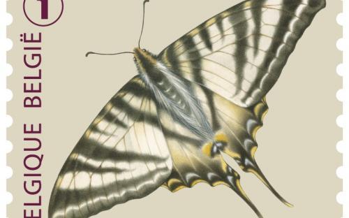 6 oktober: Vlinders van M.Meersman, Koningspage (Rolzegel)