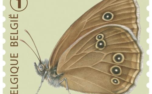 6 oktober: Vlinders van M.Meersman, Koevinkje (Rolzegel)