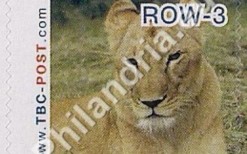 23 mei: ROW-3: Leeuw 1