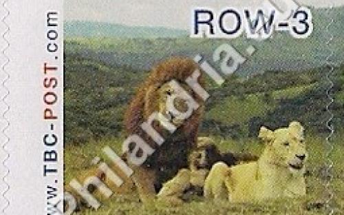23 mei: ROW-3: Leeuw 4