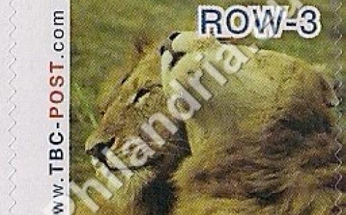 23 mei: ROW-3: Leeuw 7