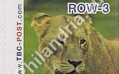 23 mei: ROW-3: Leeuw 9
