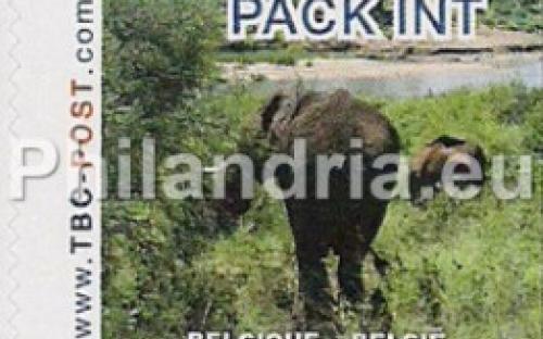 6 november: PACK-INT: Olifant 1