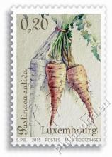 Luxemburg - Groenten van vroeger